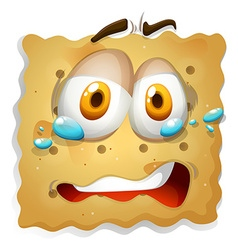 Biscuit cookie with sad expression vector image