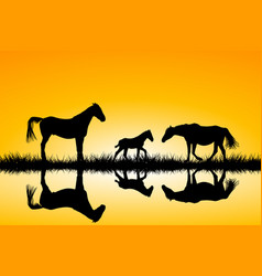countryside family horses silhouettes in wild vector image vector image