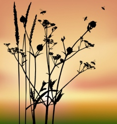 grass silhouettes backgrounds vector image