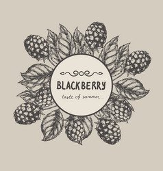 blackberry raspberry design template blackberry vector image