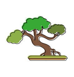 Bonsai tree japan related icon image vector