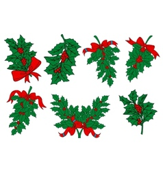 Christmas greens and holly berry branches vector