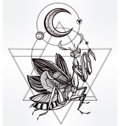 Paraying mantis iin sacred sign vector