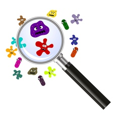 Magnifier and germs vector