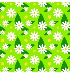 Floral spring pattern with daisies and dandelions vector image