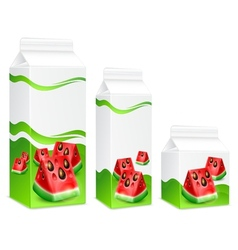 Packing of watermelon juice vector image
