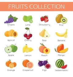 Set of fruits icons flat style design vector