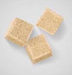 Brown sugar vector