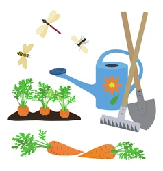 Set of elements on a garden theme vector