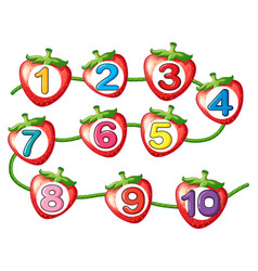 Counting numbers on strawberries vector