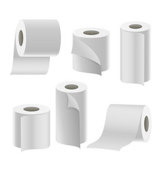 paper tape roll set bathroom hygiene 3d vector image vector image