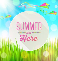 Summer greeting round banner and kites vector
