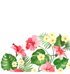 tropical flower garland vector image
