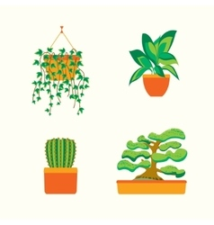 Green plants for home or office vector