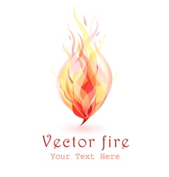 Flames of fire vector