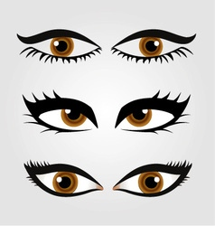 Different types of womens eyes vector