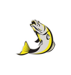 Barramundi Fish Jumping Up Isolated Retro vector image vector image
