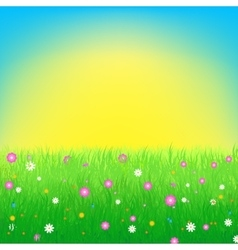 Meadow with flowers background vector