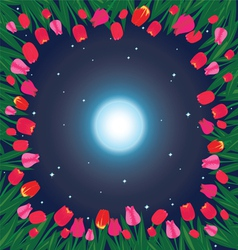 Moon on the sky and field of tulips vector