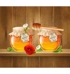 Two jar of honey composition vector