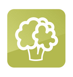 cauliflower outline icon vegetable vector image