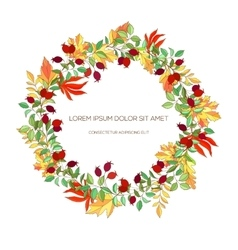 Hand drawn wreath of hawthorn and autumn leaves vector
