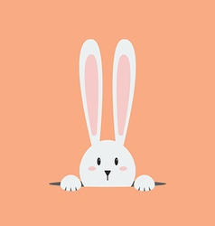 White easter rabbit vector