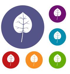 Linden leaf icons set vector