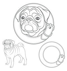 set of pug images in the collar vector image
