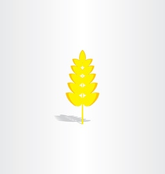 Yellow plant wheat icon vector