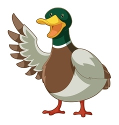 Cartoon smiling duck vector image vector image