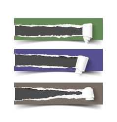 Set of three torn paper banners with rolls vector image vector image