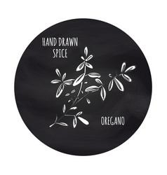 Spice oregano icon on blackboard backdrop vector