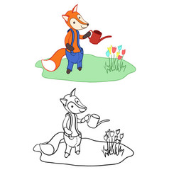 Cute fox watering flowers for colouring vector