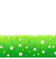 Meadow with flowers isolated on white background vector