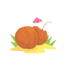 coconut and a coconut cocktail with a straw vector image