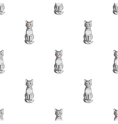 gray catanimals single icon in cartoon style vector image vector image