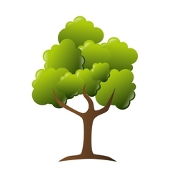 tree green ecology vector image vector image