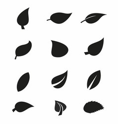 Leaf Silhouettes vector image
