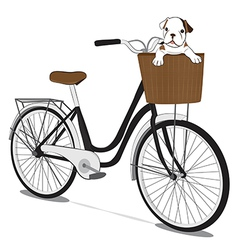 Bicycles and french bulldog puppy vector