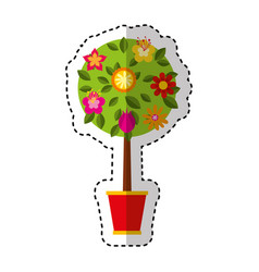 Cute tree in pot icon vector