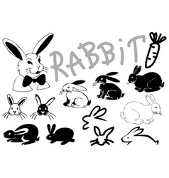 Rabbit pictures and icons vector image vector image