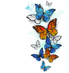 Flying butterflies morpho and monarch vector