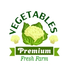 Fresh vegetables badge with cauliflower cabbage vector image vector image