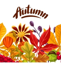 Seamless border with autumn leaves and plants vector image vector image