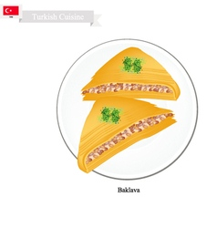 Baklava or Turkish Cheese Pastry with Syrup vector image