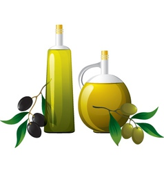 Bottle and olive branch vector image vector image
