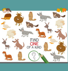 Find one of a kind with animals vector