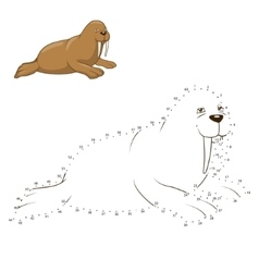 Learn to draw animal walrus vector