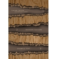 wooden background with shadows vector image vector image